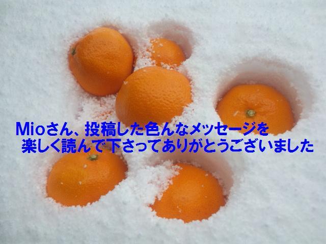 Mioさんへのお礼