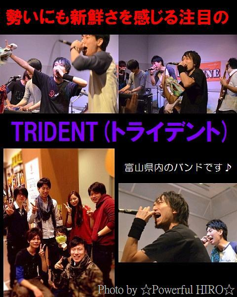 TRIDENT_201411131126081d8.jpg