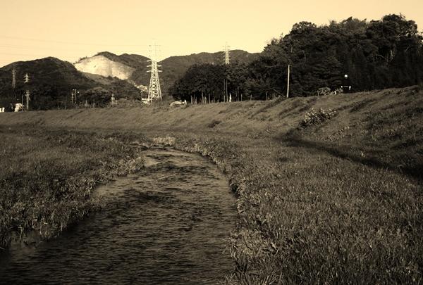 朝倉川のほとりを歩く人