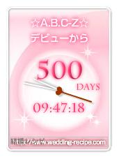 2013-06-15 500日