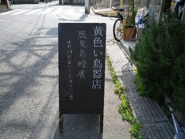 IMGP0243.jpg