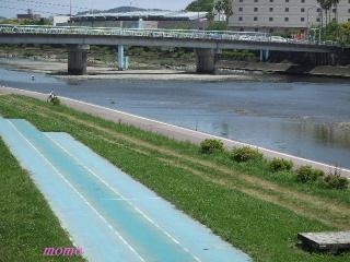 2010_0516龍馬0025