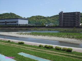2010_0516龍馬0024