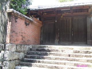 2010_0516龍馬0027