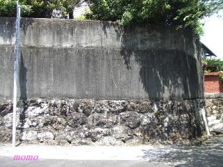 2010_0516龍馬0030