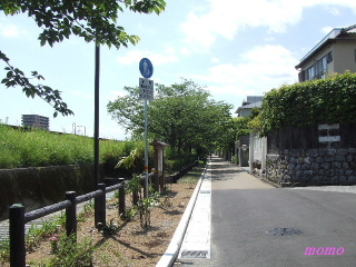 2010_0516龍馬0029