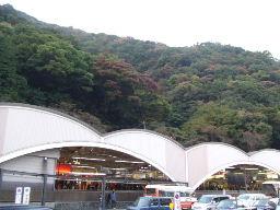 2010_1108東京0009