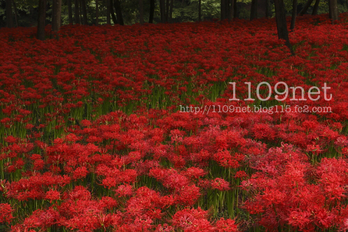 100919_h_1
