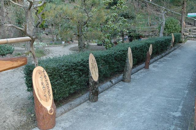 平松カタクリ園看板2