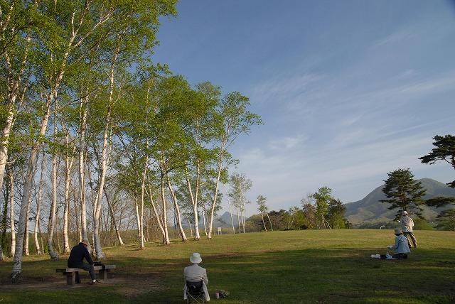 白樺からの大山3