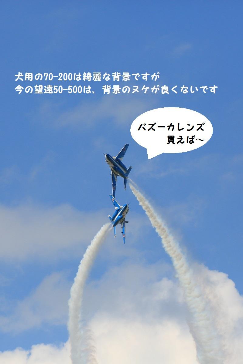 14_20140913212128e83.jpg