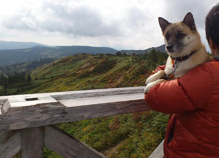 八幡平山頂2014-3