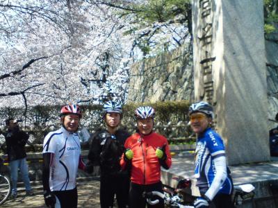 名城の桜は満開