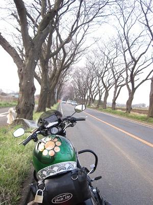 2013春分の日海軍道路