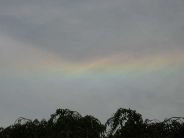 6月25日そら。。。。彩雲
