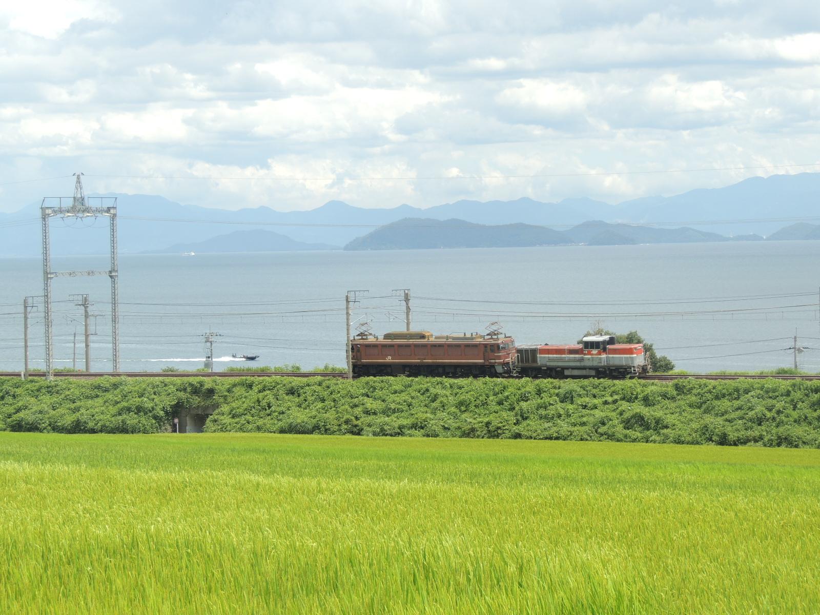 DSCN9176.jpg