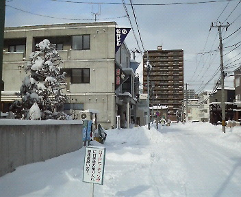 201101081212000.jpg