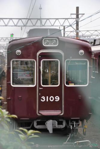 DSC_4880_convert_20111128174036.jpg