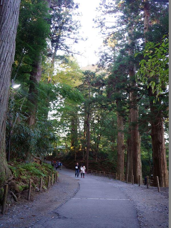 中尊寺の道