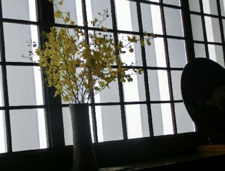 CIMG0489.窓辺の花JPG