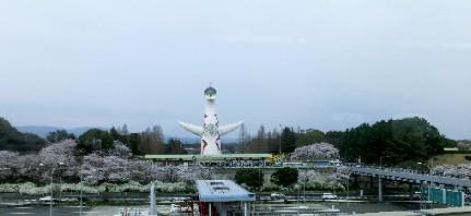 CIMG0981.万博記念公園駅JPG