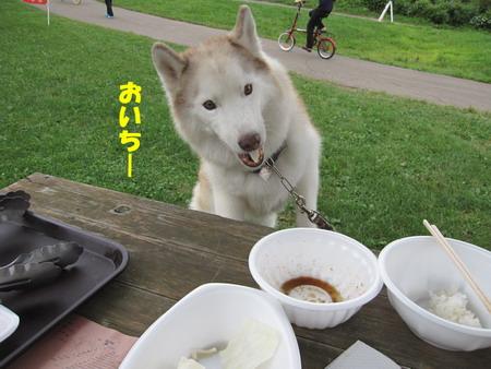 IMG_5680しんちゃん