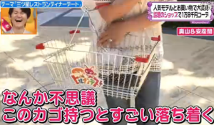 ショッピング様の籠が似合う、奥山佳恵