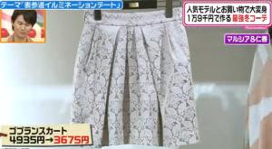 セシルマクビー(CECIL McBEE)、ゴブランスカート