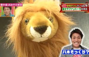 ライオンに似ている八木真澄さん(サバンナ)