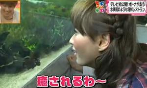 水槽の熱帯魚に見惚れる藤本美貴(モーニング娘。)