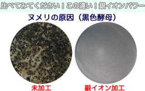 household-goods-000028.jpg