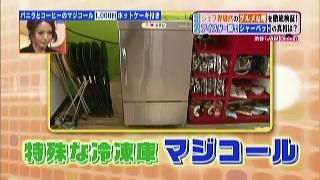 特殊な冷凍庫、マジコール