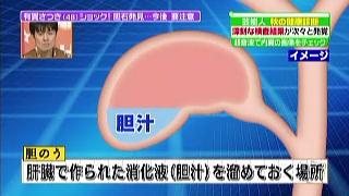肝臓で作られた消化液(胆汁)を溜めておく場所