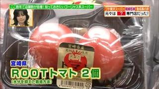 宮崎県、ROOTトマト