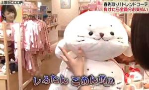 しろたんに謝る、島崎和歌子