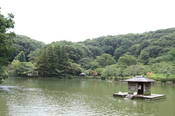2011_08_01 薬師池公園DPP_0058