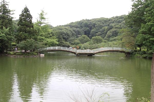 2011_08_01 薬師池公園DPP_0004