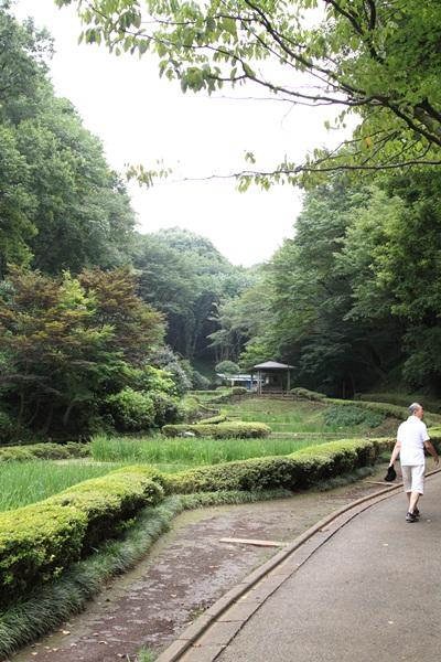 2011_08_01 薬師池公園DPP_0069