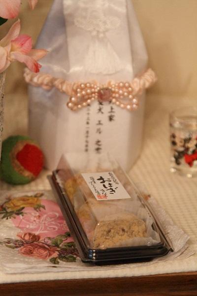 2011_08_16 エル初盆DPP_0002