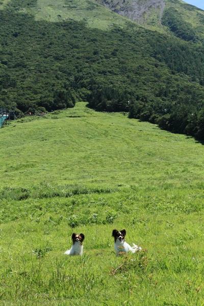 2011_08_13  大山DPP_0031