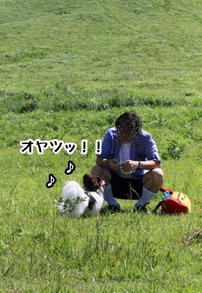 2011_08_13  大山DPP_0029