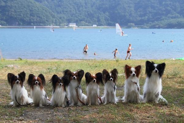 2011_08_18 西湖 ブログ用DPP_0244
