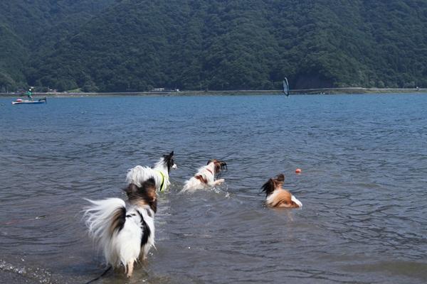 2011_08_18 西湖 ブログ用DPP_0145