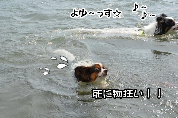 2011_08_18 西湖 ヒトミさんDSC_0713