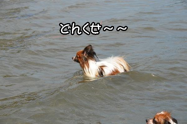 2011_08_18 西湖 ヒトミさんDSC_0667