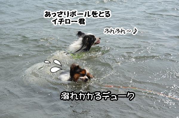 2011_08_18 西湖 ヒトミさんDSC_0712