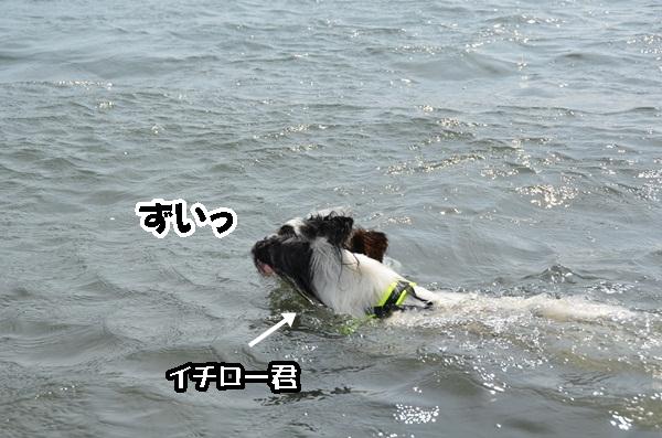 2011_08_18 西湖 ヒトミさんDSC_0711