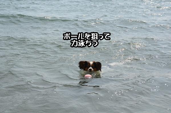 2011_08_18 西湖 ヒトミさんDSC_0710