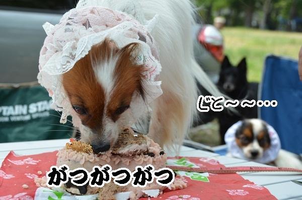 2011_08_18 西湖 ヒトミさんDSC_0624
