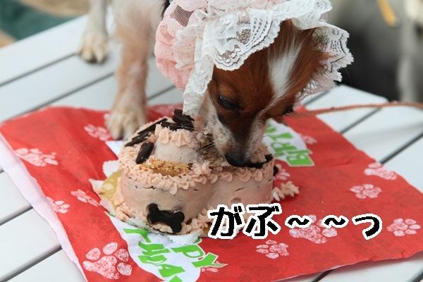 2011_08_18 西湖 ブログ用DPP_0072